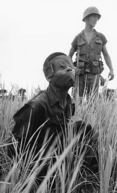 Tape covers the eyes and mouth of a suspected Viet Cong guerrilla captured during a joint U.S.-Vietnamese operation near Chau Binh on the Batangan Peninsula, 20 miles south of Chu Lai, September 9, 1965. U.S. Marines captured three suspected Viet Cong near the command post of the 3rd Battalion, 7th Marine Regiment. (Photo by Eddie Adams/AP Photo)