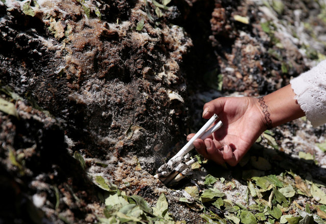 """A woman puts cigarettes in a stone which bears an impression that locals refer to as """"Devil face"""" before removing it, as a shrine frequented by indigenous witch doctors is cleared to expand a main highway between La Paz and El Alto, Bolivia, August 24, 2016. (Photo by David Mercado/Reuters)"""