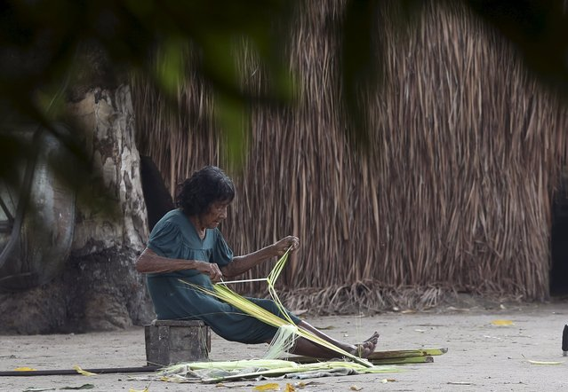 An indigenous woman from the Kamayura tribe makes preparations to craft handmade baskets in their village at Xingu national park in Mato Grosso, Brazil, October 3, 2015. (Photo by Paulo Whitaker/Reuters)