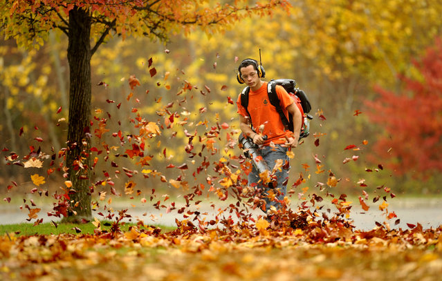Bergen County Parks Department employee Andrew Scheideler of Ridgefield Park uses a blower to clear leaves at Van Saun Park in Paramus, N.J. on Wednesday morning, November 12, 2014. (Photo by Amy Newman/AP Photo/The Record)