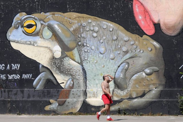A man passes a graffiti along the Danube canal on a hot summer day in Vienna, on July 24, 2013. Austria has been hit by a heat wave with temperatures in Vienna rising up to 36 degrees Celsius in the next days. (Photo by Leonhard Foeger/Reuters)
