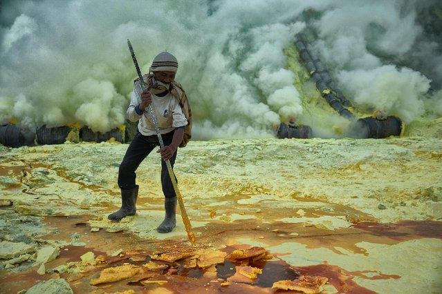 "A miner chisels out chunks of sulphur as he readies his basket to carry out of the bowels of the Ijen volcano.  Miners carried average 70 kilo loads one kilometre up and out of the volcano and then three kilometres down to a weigh station further down the mountain. Each miner undertook an average of two carries per day and received payment of around US$0.09 per kilogram carried.  This miner can be seen chewing on his scarf to help prevent the ingress of sulphur dioxide and hydrogen sulphide into his body.  Ijen volcano, Indonesia, 2012. A photographer has travelled the globe to capture people working in the world's most extreme conditions – with some risking their lives for a wage of less than $1 a day. Photographer Hugh Brown has spent more than eight years uncovering those who are exposed to the harshest and most dangerous ways of making a living. Up to 30 million people worldwide are forced to work in crippling conditions – from deep within underground mines, on the top of mountains and the side of sheer cliff-faces. The images have now been documented in a thought-provoking project named ""The Cruellest Earth"", and will also be turned into a photographic art book. (Photo by Hugh Brown/South West News Service)"