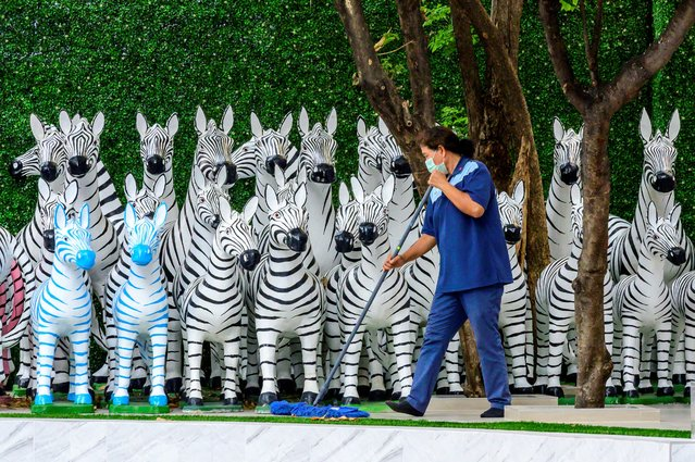 An employee sweeps the ground in front of zebra figures installed outside a health clinic in Bangkok on February 16, 2021. (Photo by Mladen Antonov/AFP Photo)