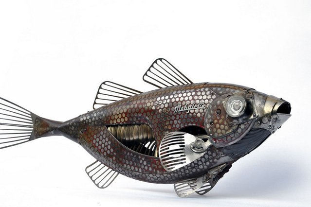 Fish by Edouard Martinet. (Photo by Edouard Martiniet/Caters News)