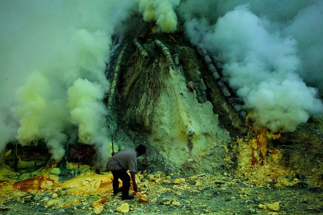 A miner extracts sulphur from pipe at the flow crater during the offering ceremony. (Photo by Ulet Ifansasti/Getty Images)