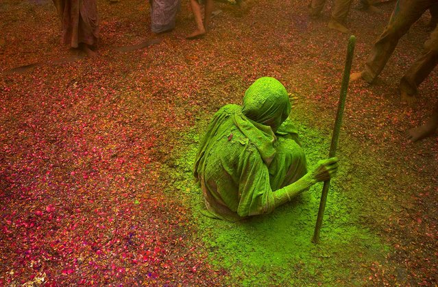 An Indian Hindu widow smeared with colors sits and watches others playing during Holi celebrations at the Gopinath temple, 180 kilometres (112 miles) south-east of New Delhi, India Monday, March 21, 2016. (Photo by Manish Swarup/AP Photo)