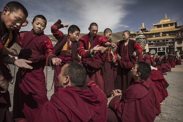 Tibetan buddhist monks, who are prohibited from harvesting cordycep fungus, debate  on May 20, 2016 outside the Sershul Monastery on the Tibetan Plateau in the Garze Tibetan Autonomous Prefecture of Sichuan province. (Photo by Kevin Frayer/Getty Images)