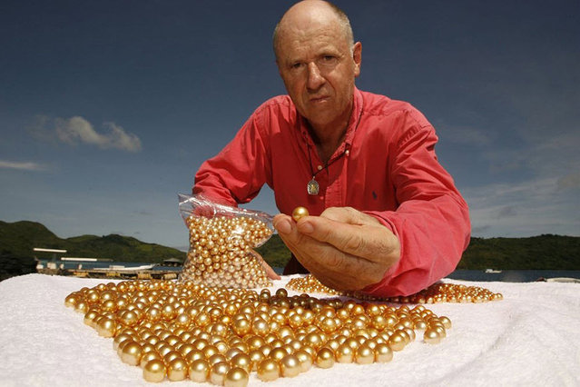 Golden Pearl Farming In Philippines