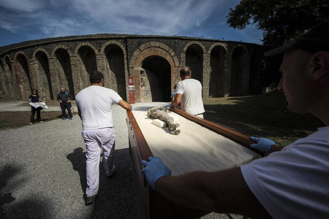 Members of a working team appointed by the Archaeological Superintendence of Pompeii carry one out of thirty cast of victims of the eruption of Vesuvius in 79 AD in Pompeii, to perform a Cat scan (Computerized axial tomography) in Napoli, Italy, 29 September 2015. (Photo by Cesare Abbate/EPA)