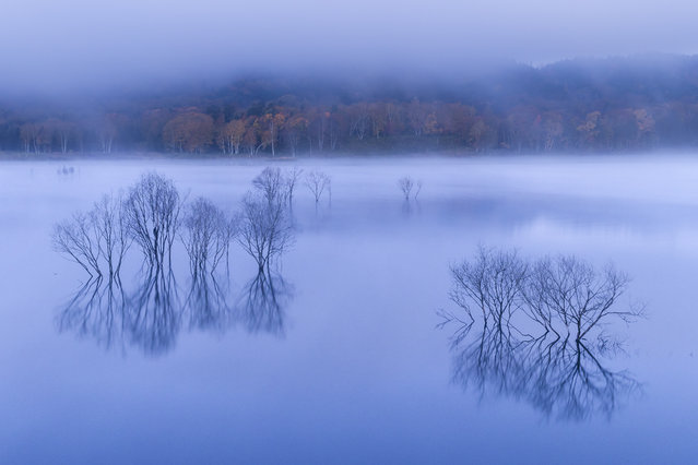 """Autumn of the quietness"". The daybreak approaches, and a lake buried among late-night fog regains a color. Colored leaves of the opposite bank added color to the blue world. Photo location: Tobestu Hokkaido, Japan. (Photo and caption by Hiroshi Tanita/National Geographic Photo Contest)"