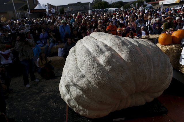 A pumpkin is being weighed on stage during the 42nd annual Safeway World Championship Pumpkin Weigh-off in Half Moon Bay, California October 12, 2015. (Photo by Stephen Lam/Reuters)