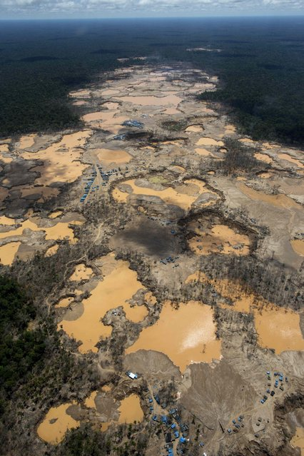 This November 11, 2014 aerial photo, shows a deforested area dotted with blue tarps, marking the area where miners reside, and craters filled with water, caused by illegal gold mining activities, in La Pampa, in Peru's Madre de Dios region. (Photo by Rodrigo Abd/AP Photo)