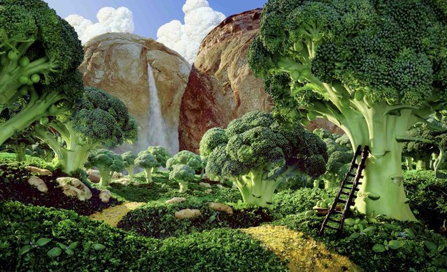 """Brocolli Forest"". (Photo by Carl Warner)"