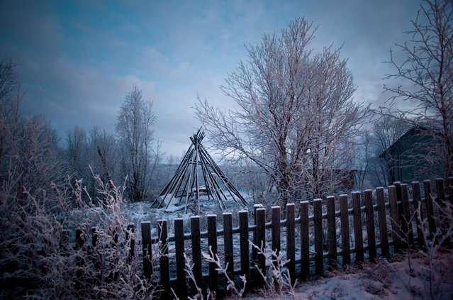 Teepee-style structures are common in Sami villages in Norway, where they are often used to smoke reindeer meat, in 2011. (Photo by Erika Larsen/National Geographic)