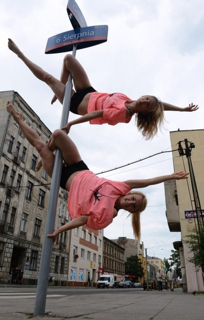 "Members of the ""Avocadoo"" club perform a pole dance on a street sign pole in Lodz, central Poland on June 27, 2013. Talk about a traffic stopper: three pole dancers in central Poland have been honing their skills out in the streets, throwing their legs around signposts to the surprise and delight of many a passerby. (Photo by Janek Skarzynski/AFP Photo)"