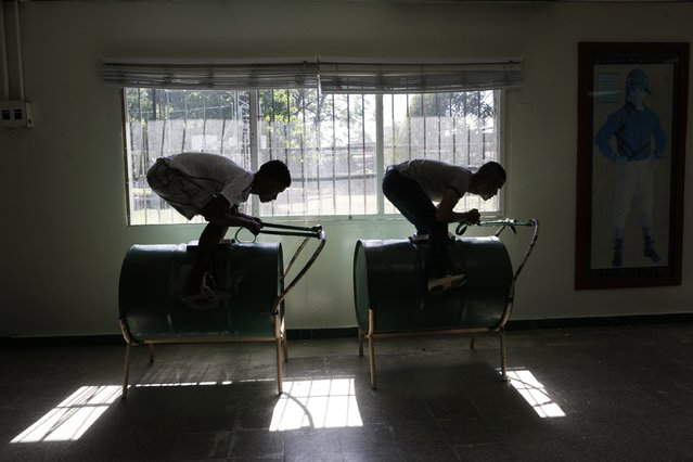 """Jockey students practice their racing position on a horse simulator made from an oil barrel, known as """"Pangal"""", at The Jockeys School in Panama City February 11, 2015. (Photo by Carlos Jasso/Reuters)"""