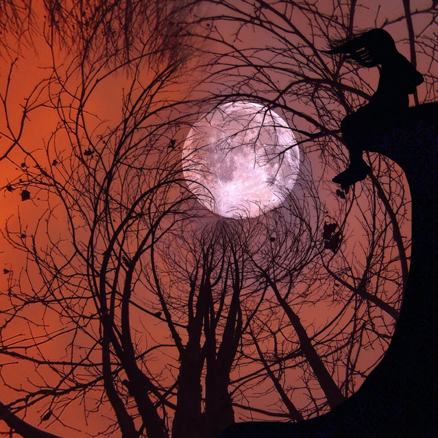 A stay-at-home mom's surreal iPhone snaps of her children have seen her rack up more than a half-million Instagram fans. Ali Jardine, 42, photographs silhouettes of her two kids in fairy-tale environments, from a spiraling night sky to sunsets. The creative mom has gained more than 519,000 followers online since she got her first iPhone in November 2010. Here: a girl perches on a branch looking at a full moon. (Photo by Ali Jardine/Caters News)
