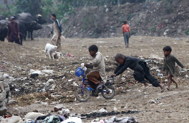 A boy pushes another on a bicycle as they play along a littered ground in Lahore's slum, February 16, 2015. (Photo by Mohsin Raza/Reuters)