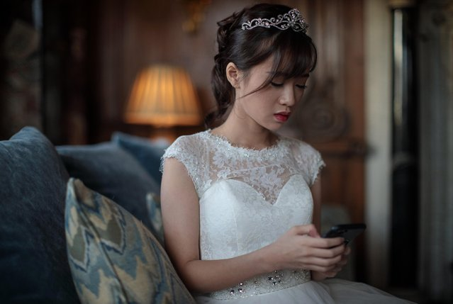 Debutante Annie Ding, 20 from Hong Kong checks her phone at Leeds Castle during the Queen Charlotte's Ball on September 9, 2017 in Maidstone, England. (Photo by Jack Taylor/Getty Images)