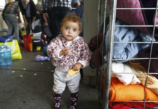 A young child eats bread as clothing is distributed to migrants on their arrival at a railway station in Vienna, Austria September 5, 2015. (Photo by Dominic Ebenbichler/Reuters)