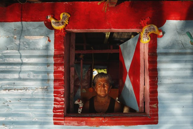 A woman named Alida poses at the window of her stilt house in the village of Ologa in the western state of Zulia October 23, 2014. (Photo by Jorge Silva/Reuters)