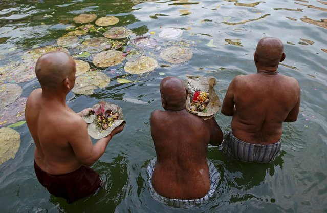 Hindu devotees pray in a holy pond on the auspicious day of Mahalaya in Mumbai, India, October 12, 2015. Hindus offer prayers with holy water after taking a dip in the river to honour the souls of their departed ancestors during Mahalaya, which is also called Shraadh or Pitru Paksha. (Photo by Danish Siddiqui/Reuters)