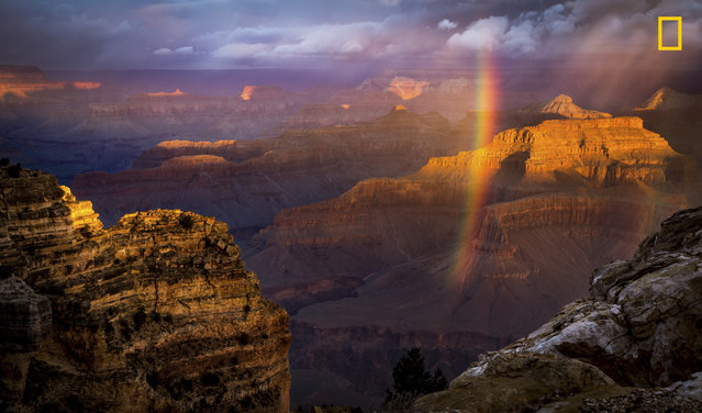 """Just at the time of sunrise a storm approached the south rim and I almost packed my gears. But it cleared for a temporary period of time giving this amazing view from Powell Point. My first trip to this magnificent Landmark left me speechless while I was clicking this shot"". (Photo by Naresh Balaguru/National Geographic Travel Photographer of the Year Contest)"