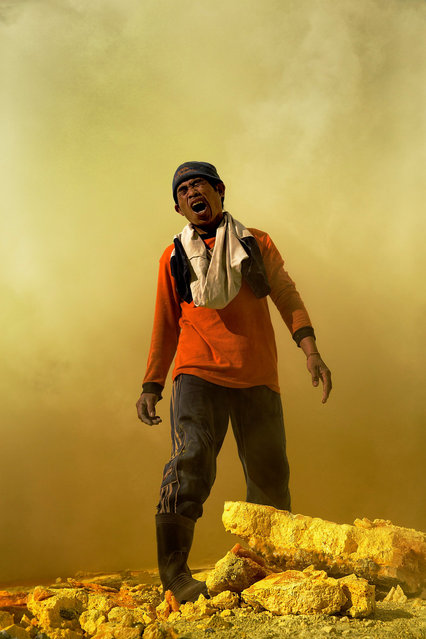 A sulphur miner in Indonesia's Ijen volcano gasps in pain in air thick with sulphur dioxide and hydrogen sulphide.  When the sulphur from these gases mixes with the moisture in one's eyes, lungs and throat it creates sulphuric acid. Hence the screaming in pain.  Ijen volcano, Indonesia, 2012. (Photo by Hugh Brown/South West News Service)