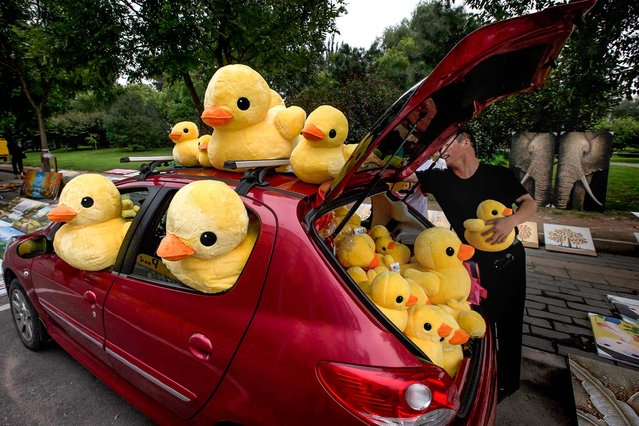 A vendor sells stuffed animals from his car in Beijing, China, on August 12, 2013. (Photo by Ng Han Guan/Associated Press)