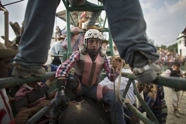 Cowboy Alexis Azeituno, 25, from Guatemala, gets ready to ride a bull during the International Livestock Fair Show in Havana March 22, 2015. (Photo by Alexandre Meneghini/Reuters)