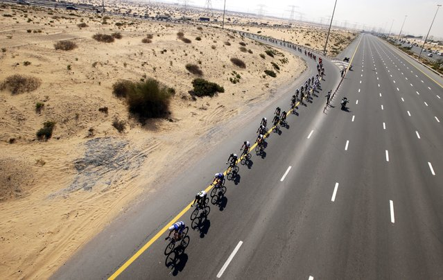 The pack is on the way on the Emirates Road Highway during the first stage of the Dubai Tour 2016 cycling race in Dubai, United Arab Emirates, 03 February 2016. (Photo by Ali Haider/EPA)