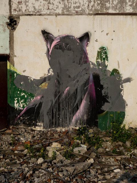 """Graffiti Grafittied"". (Photo by Graham Fink/Riflemaker)"