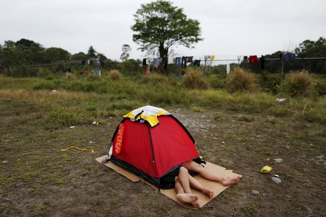 A Cuban migrant couple rests inside a tent at a provisional shelter in Paso Conoa, at the border with Costa Rica March 20, 2016. (Photo by Carlos Jasso/Reuters)