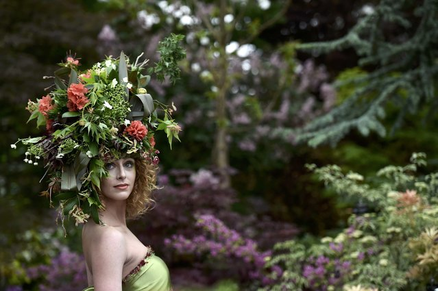 A model wears a floral head dress as she promotes a chain of garden centres at the Royal Horticultural Soceity's Chelsea Flower Show in London, Britain, May 18, 2015. (Photo by Toby Melville/Reuters)