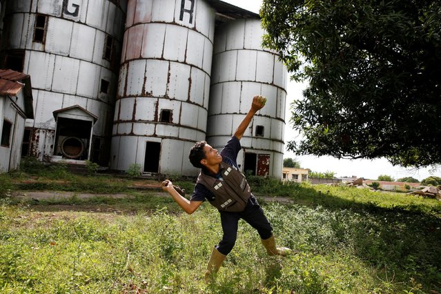 Josue Moreno, 14, throws a stick towards a mango tree as he tries to dislodge the fruits in La Fria, Venezuela, June 2, 2016. (Photo by Carlos Garcia Rawlins/Reuters)