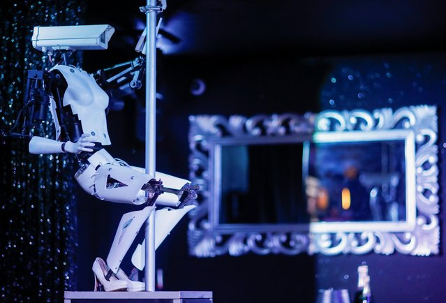 A pole-dancing robot created by British artist Giles Walker is displayed in the Strip Club Cafe in Nantes, France, August 29, 2019. (Photo by Stephane Mahe/Reuters)