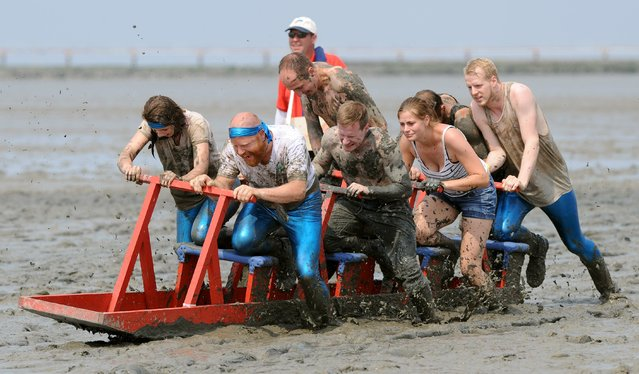 "Participants of the mudflat sledge championships push their sledge through the wadden sea on July 20, 2014 in Upleward, northern Germany. The competition was titled ""Dirty sports for a clean job"" and was a charity event in favour of a regional association fighting against cancer. (Photo by Ingo Wagner/AFP Photo/DPA)"