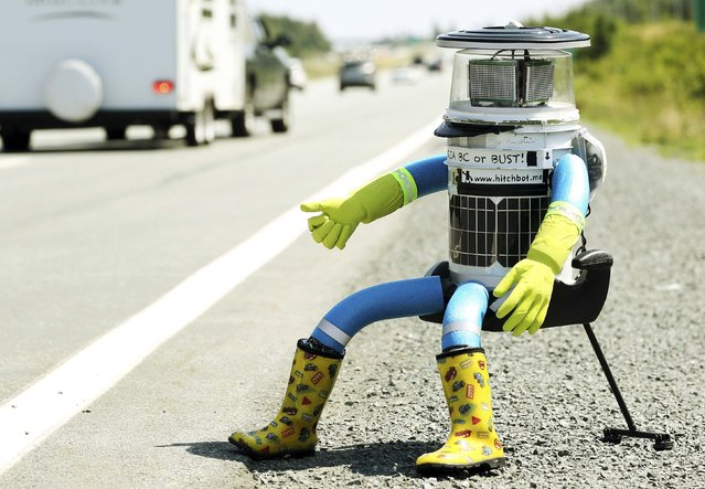 The anthropomorphic robot named hitchBOT sits on the shoulder of Highway 102 to begin its 6000 kilometer cross country journey outside of Halifax, Nova Scotia, July 27, 2014. The hitch hiking robot is part of a social experiment to see if drivers will pick up and drop off the robot in one piece to an art gallery in Victoria, British Columbia. (Photo by Paul Darrow/Reuters)