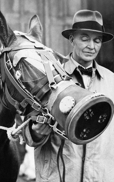 A specially designed gas mask for horses is being tested by this horse. The test took place in London, March 22, 1941, at a demonstration arranged by the National Air Raid Precautions Animals Committee. (Photo by AP Photo)