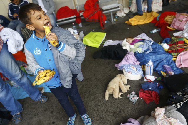 A young child bites into a banana as migrants rest on the platform after arriving at a railway station in Vienna, Austria September 5, 2015. (Photo by Dominic Ebenbichler/Reuters)