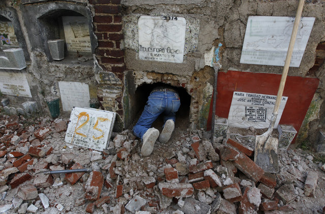 A grave cleaner crawls inside a crypt during exhumation works at the Cemetery General in Guatemala City January 29, 2014. (Photo by Jorge Dan Lopez/Reuters)