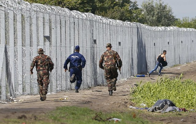 A migrant crosses the boarder fence as soldiers and police try to catch him clo to a migrant collection point in Roszke, Hungary September 12, 2015. (Photo by Laszlo Balogh/Reuters)