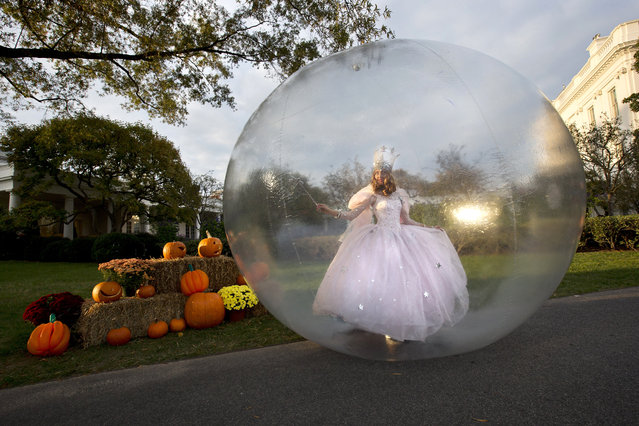 A actress dressed as Glinda, the Good Witch of the North from the Movie 'The Wizard of Oz,' performs by the Rose Garden of the White House before President Barack Obama greeted costumed children during Halloween festivities at the White House in Washington, Friday, October 31, 2014. (Photo by Jacquelyn Martin/AP Photo)