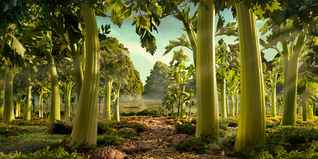 """Celery Forest"". (Photo by Carl Warner)"