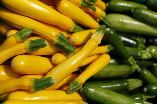 Yellow and green zucchini are seen on sale at Chino Farm in Rancho Santa Fe, California May 15, 2012. (Photo by Mike Blake/Reuters)