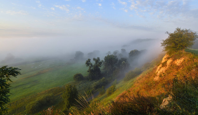 In the warm light of the morning sun dense morning fog surrounds the landscape of the Oderbruch near Lebus, Brandenburg, Germany on June 19, 2016. (Photo by Patrick Pleul/DPA)