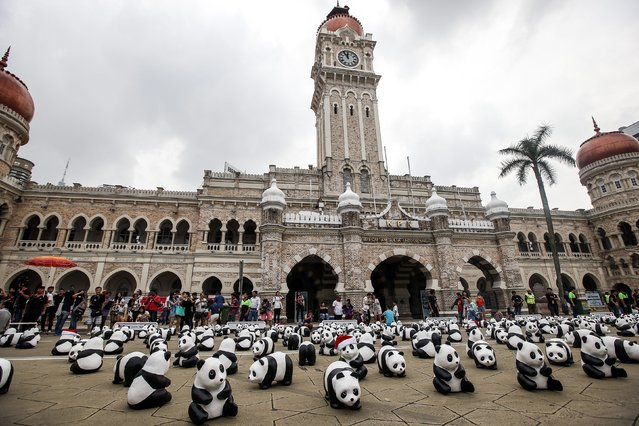 """A general view shows part of the 1,600 paper pandas displayed in front of Sultan Abdul Samad building, a Malaysian iconic building, in Kuala Lumpur, Malaysia, 21 December 2014. The Paper pandas were created by French artist Paulo Grangeon, who crafted 1,600 pandas. The creations, which were made in six different shape and size, will visit more than 15 iconic landmarks in Malaysia under the theme """"Initiating the Culture of Creative Conservation"""". (Photo by Azhar Rahim/EPA)"""
