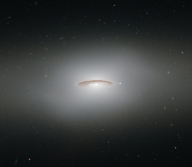 This image made by the NASA/ESA Hubble Space Telescope shows NGC 4526. One of the brightest lenticular galaxies known, it has hosted two known supernova explosions, one in 1969 and another in 1994, and is known to have a supermassive black hole at its center with a mass of 450 million Suns. NGC 4526 is part of the Virgo cluster of galaxies. (Photo by ESA/Hubble & NASA via AP Photo)