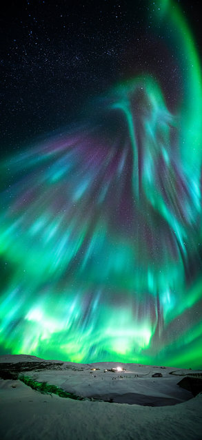 Aurora like phoenix. Wang Zheng (China). As the Chinese New Year approached on 31 January, the photographer captured the Aurora Borealis looking like a phoenix, the mythical Chinese bird, flying in the sky over the Golden Circle. At the foreground, the aurora reflects its green colours on the river that is crossing through the snow. (Photo by Wang Zheng/National Maritime Museum)