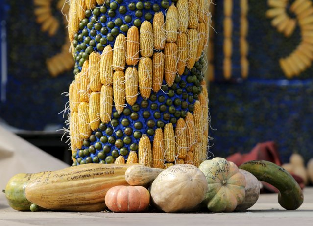 A detail of an altar, made of corn and pumpkins, where Pope Francis will give the main mass on July 12 during his visit to Paraguay, in Asuncion July 9, 2015. Pope Francis will arrive in Paraguay on July 10. (Photo by Jorge Adorno/Reuters)